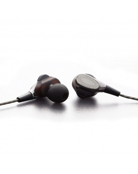 HiFi Double Earbuds