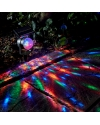 Solar LED Color Changing Garden Light