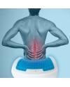 Gel Spine Backrest Cushion