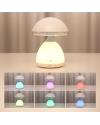 Dome LED Desk Lamp