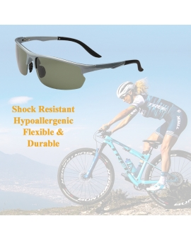 Scholar Sport Sunglasses